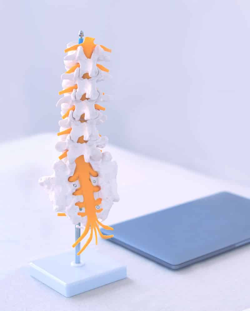 chiropractic services in Dublin